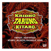 Kridho Taruno (Kitaro) - Sayang (Ndx Aka - Malam).mp3