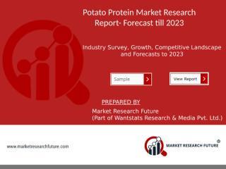 Potato protein Market.pptx